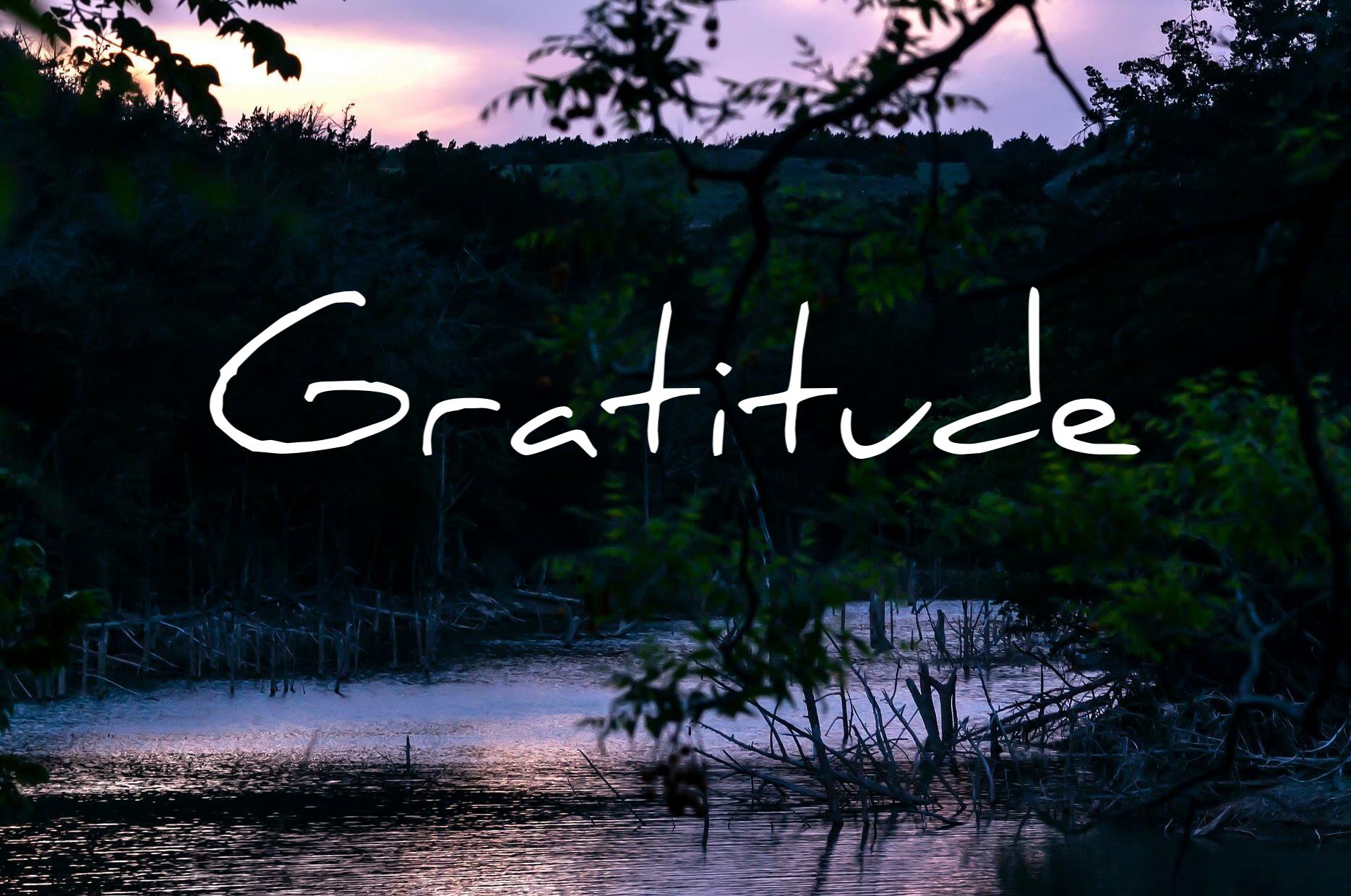 Reflections on Gratitude by Steven Shomler