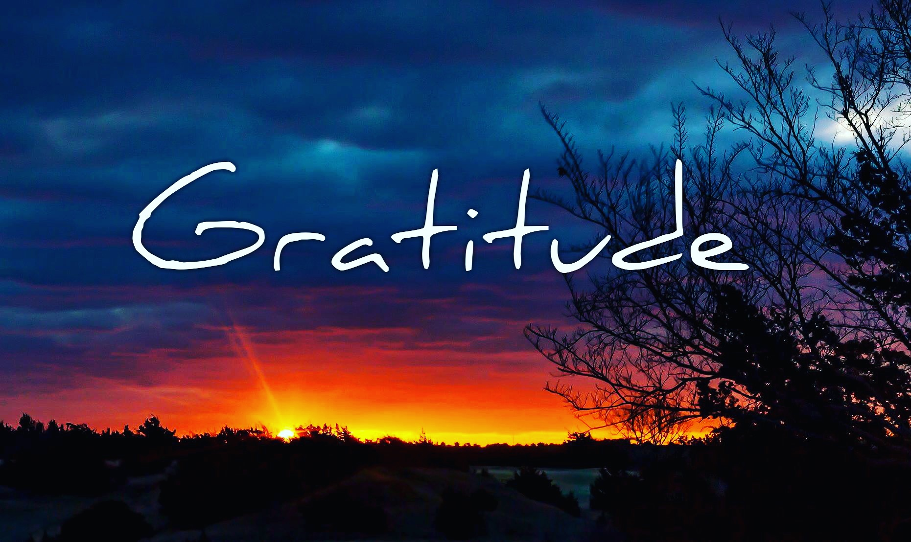 Reflections on Gratitude by Steven Shomler